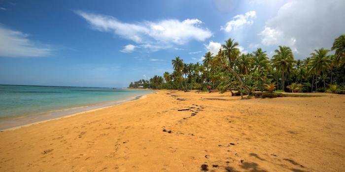 Las terrenas Playa El Portillo