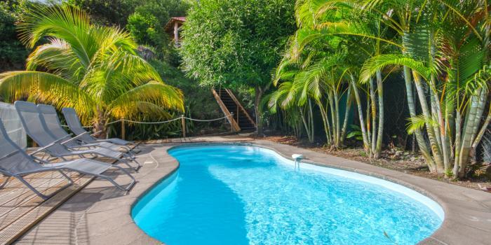 location maison martinique avec piscine à sainte luce