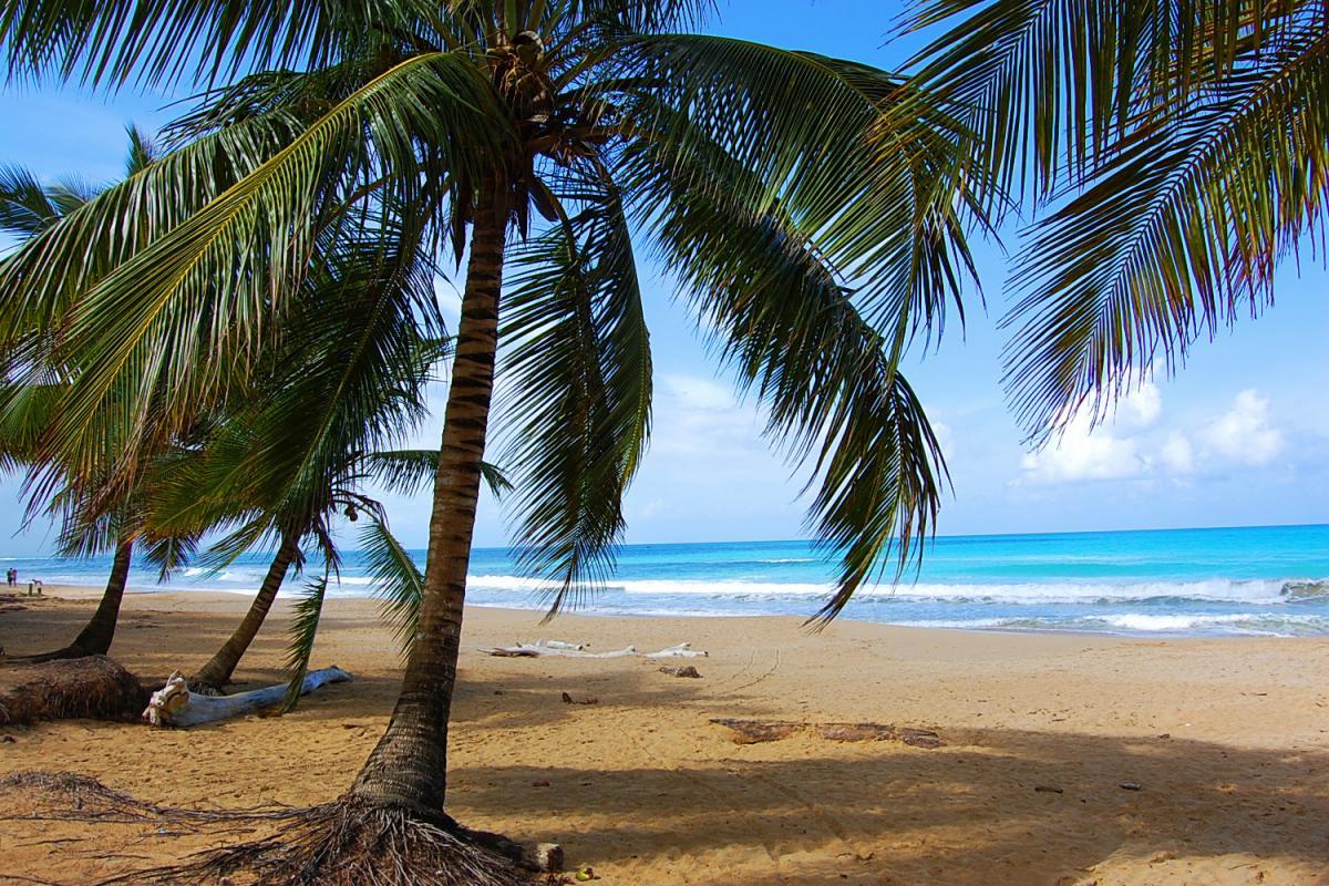 Playa Coson - Las Terrenas - République Dominicaine