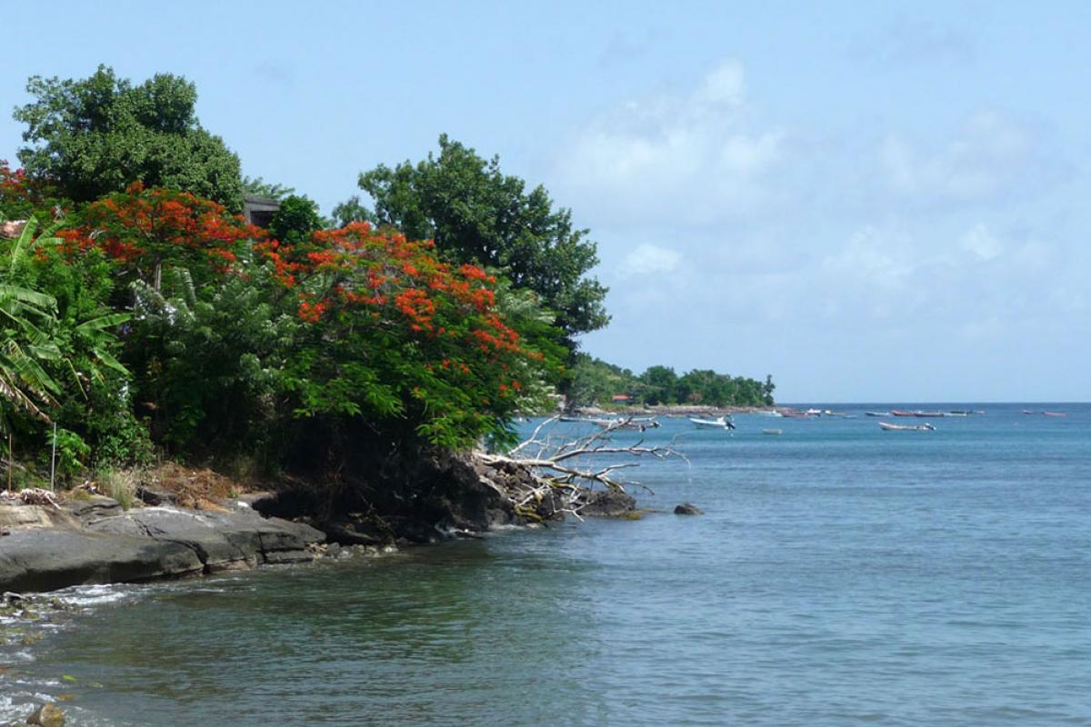 Plage de Petite Anse aux Anses d'Arlet