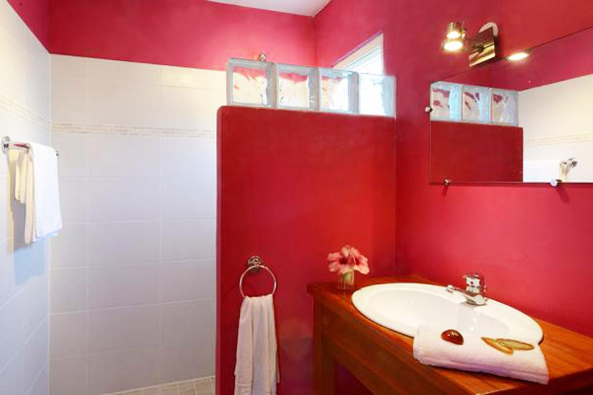 Studios la Plénitude - Chambre Fuschia salle de douche