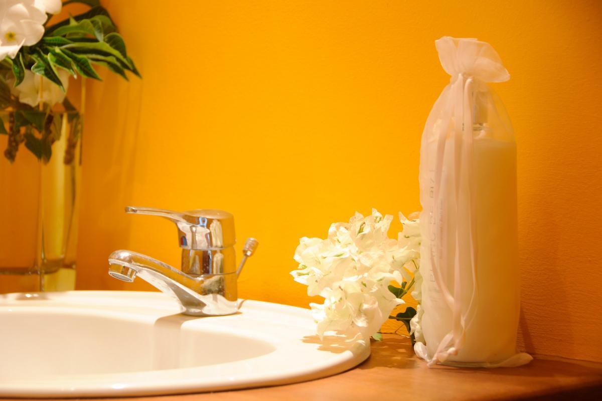 Studios la Plénitude - Chambre Jaune salle de douche