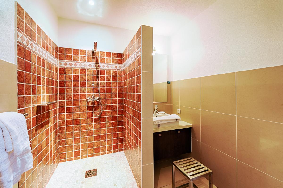 Bleu Emeraude - Salle de douche appartement 2 chambres
