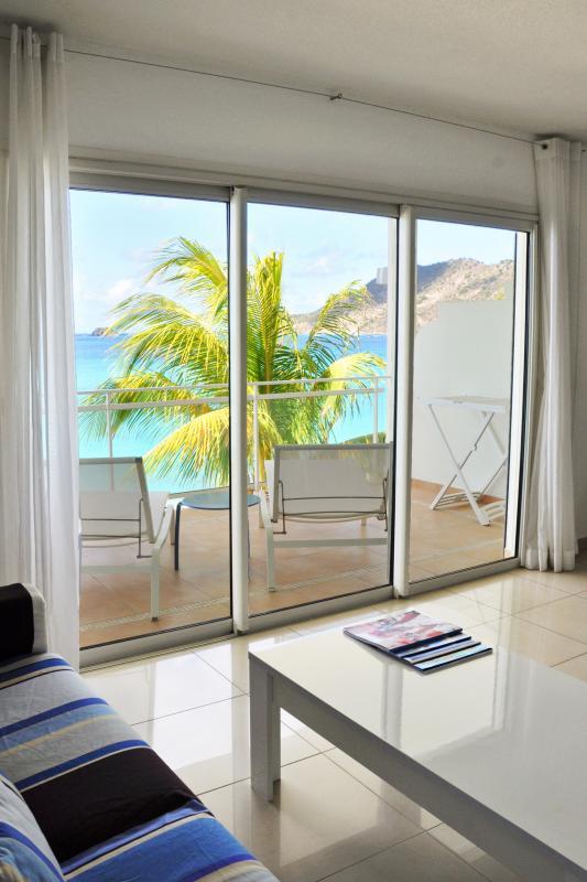 Bleu Emeraude - Salon et terrasse vue mer appartement 1 chambre