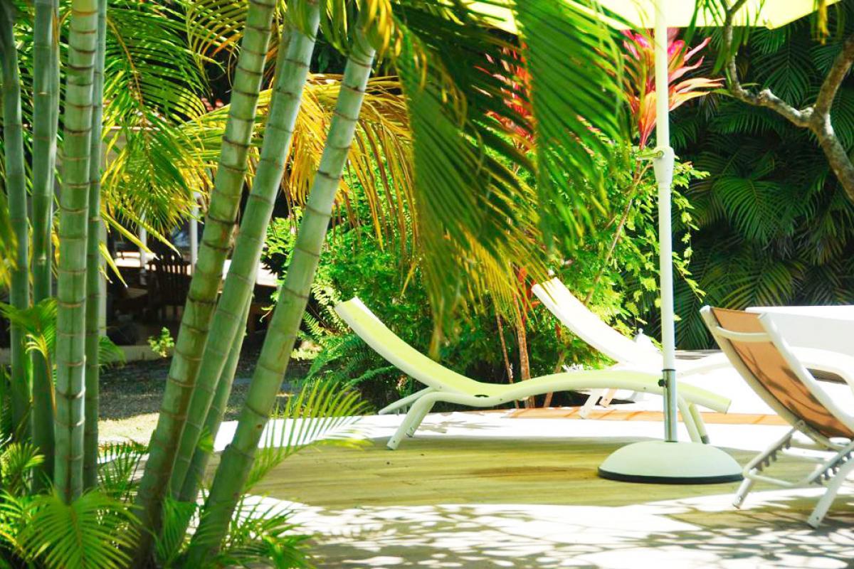 Location villa à 100m de la plage - Sous les plamiers