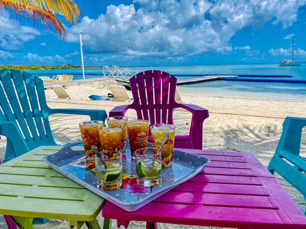 Villa de luxe en Guadeloupe - Séjour Cuisine