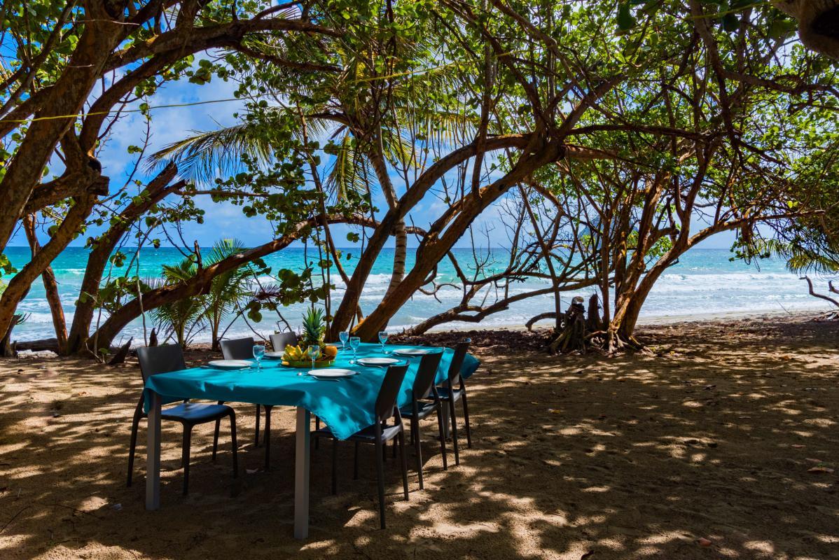 Villa grand standing les pieds dans l'eau piscine vue mer Martinique plage