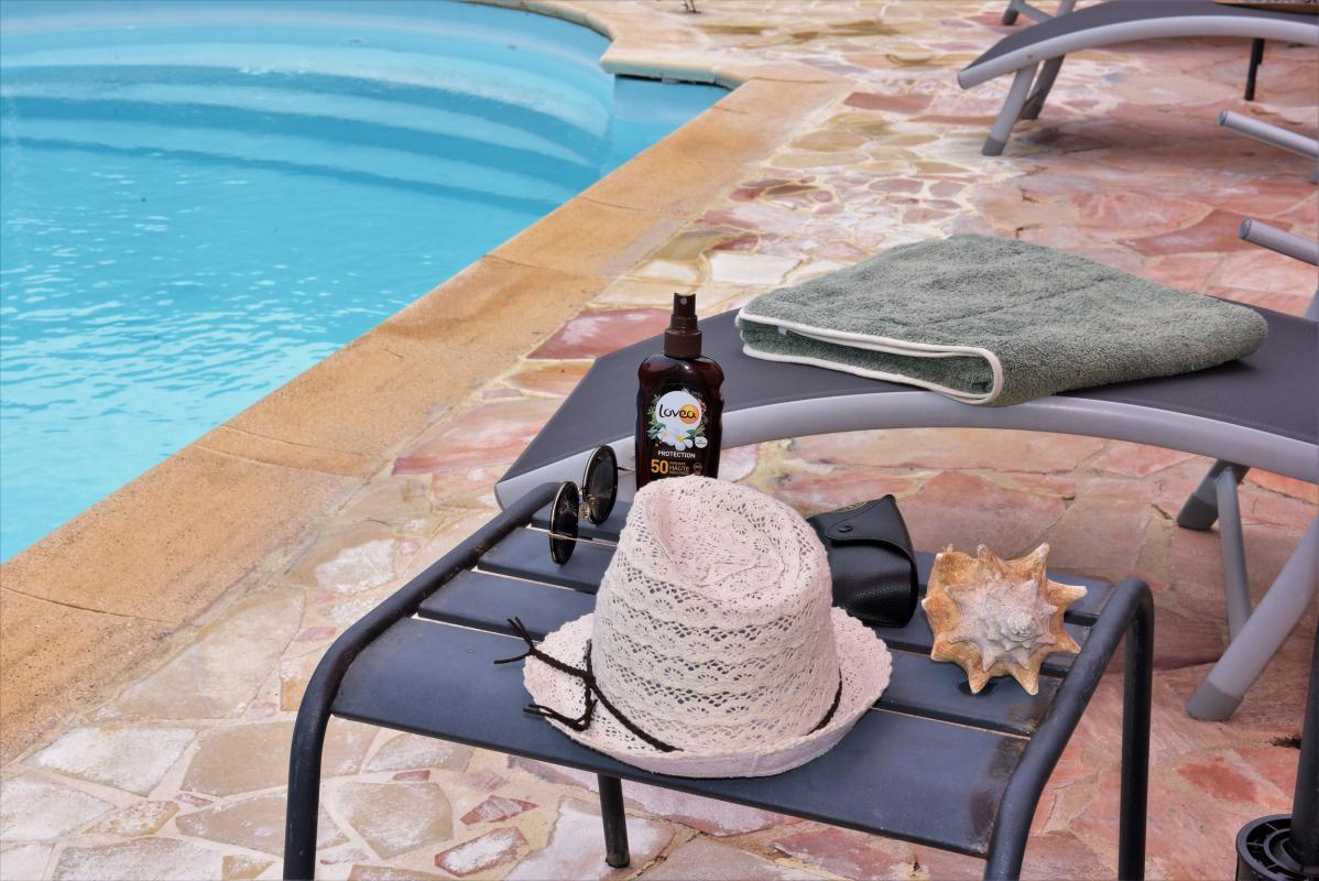 location villa martinique saint anne piscine detail
