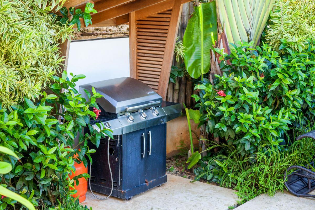 Location villa Las Terrenas - Le barbecue