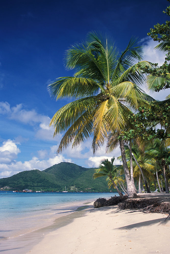 Plage Pointe Marin Martinique Sainte Anne